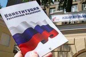 Двухкратная олимпийская чемпионка Карина Азнавурян проголосовала по Конституции онлайн. Фото: сайт мэра Москвы