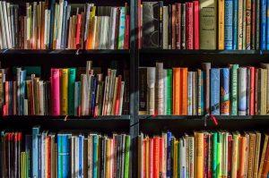 Литературную встречу проведут в библиотеке имени Антона Чехова. Фото: pixabay.com