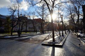 Фотовыставка открылась на бульваре в районе. Фото: Анна Быкова