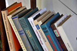 Работник районной библиотеки представил литературный видеоролик. Фото: Анна Быкова