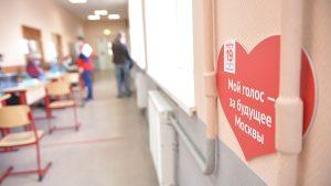 Политолог: Число голосующих на дому москвичей заметно меньше, чем в 2020 году. Фото: Пелагия Замятина, «Вечерняя Москва»